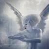 Help - последнее сообщение от Angel on broomstick